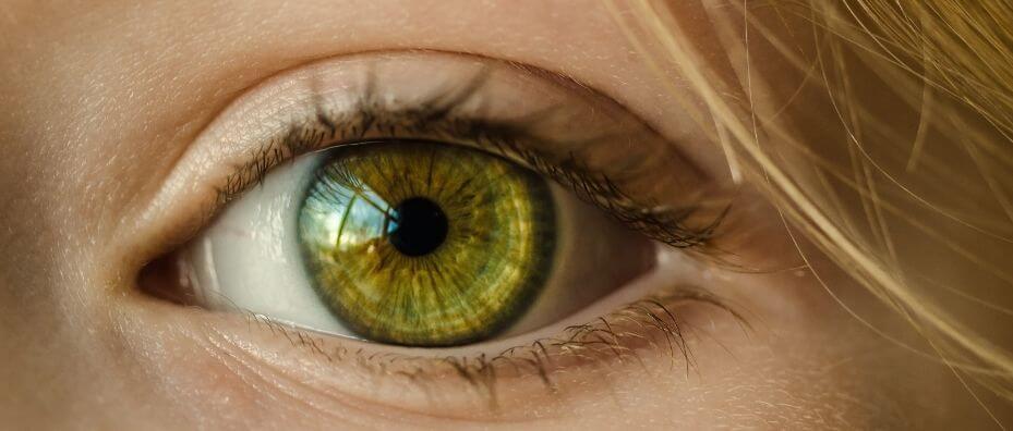 close look at eye